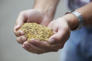 ABZ Diervoeding produceert een zeer breed assortiment pluimveevoeders, afgestemd op uw bedrijf.