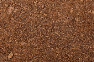 veevoeder raapzaadschroot grondstoffen