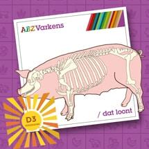 sterker beenwerk voor uw varkens met hy-d