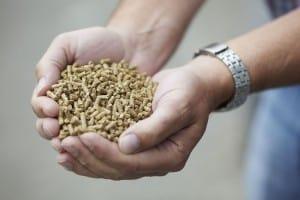Het assortiment varkensvoeders van ABZ Diervoeding is opgebouwd uit verschillende type voeders.