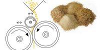 Minder uitval en meer uniformiteit met vleesvarkensvoer van ABZ Diervoeding
