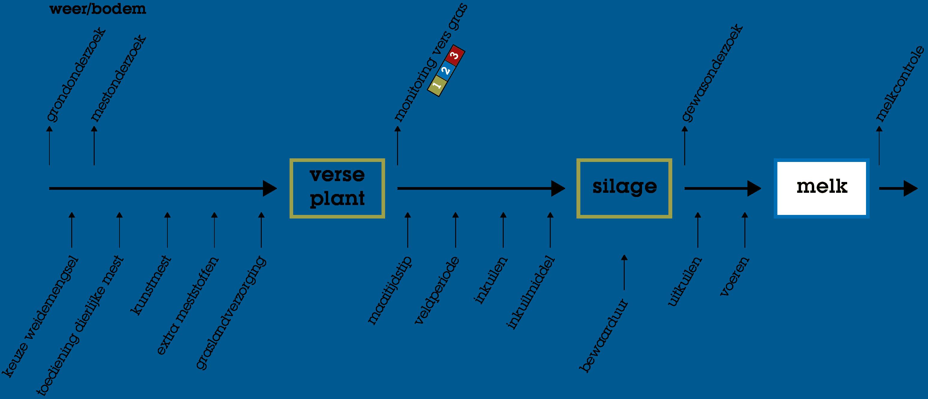 Actief Ruwvoer proces