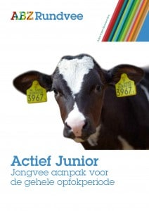 Actief Junior jongvee aanpak voor de gehele opfokperiode