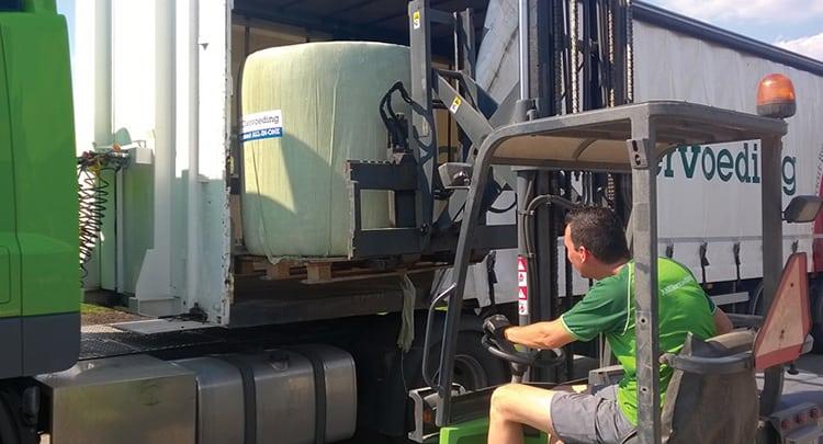 fris rundveevoer in de zomermaanden