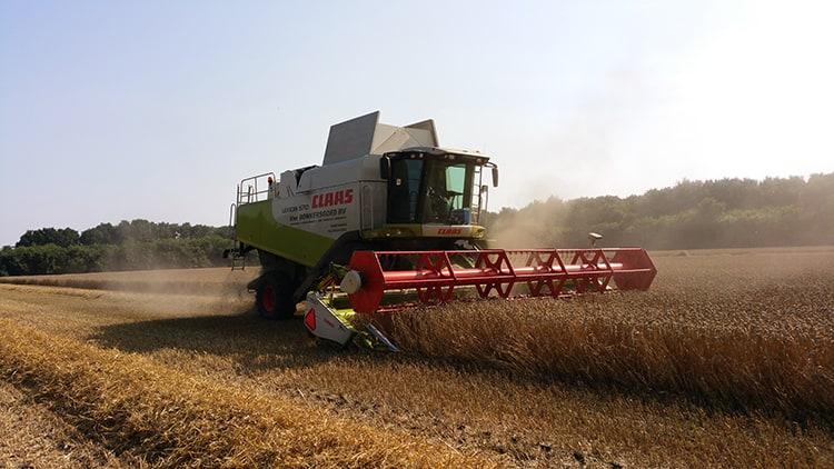 soepele overgang oude oogst naar nieuwe oogst bij ABZ Diervoeding