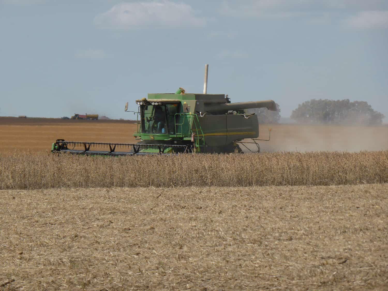 goede graanexporten zorgen voor hogere prijzen, grondstoffen update ABZ Diervoeding oktober 2019