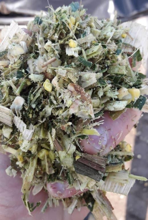 Mais beoordelen op korrelverkleining en haksellengte
