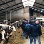 Eiwit in of uit het rantsoen, melkveebedrijf